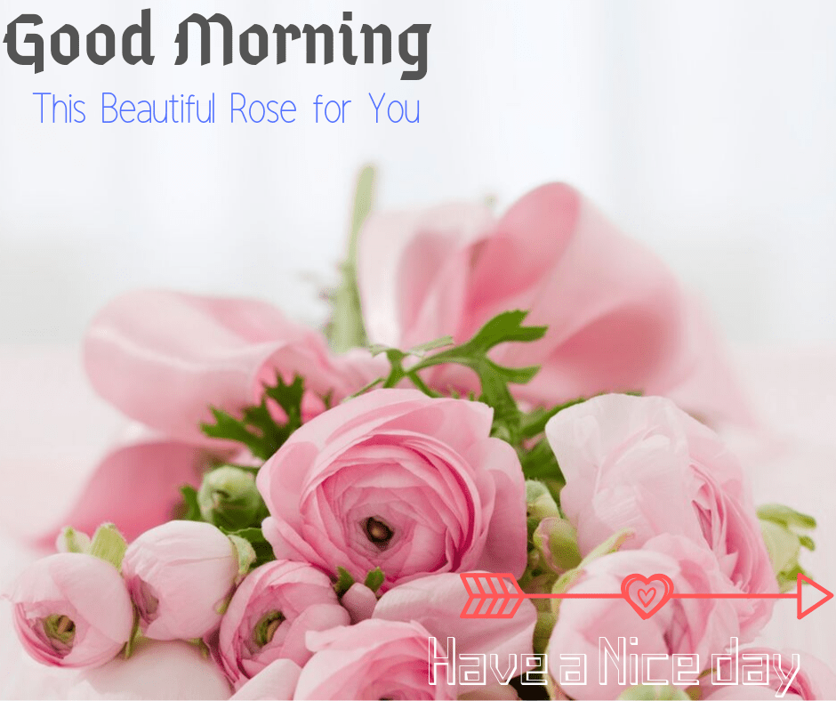 ♥ Good morning sweetheart! Might the bluebirds sing songs of affection so that you can hear as you might be preparing for the day forward.