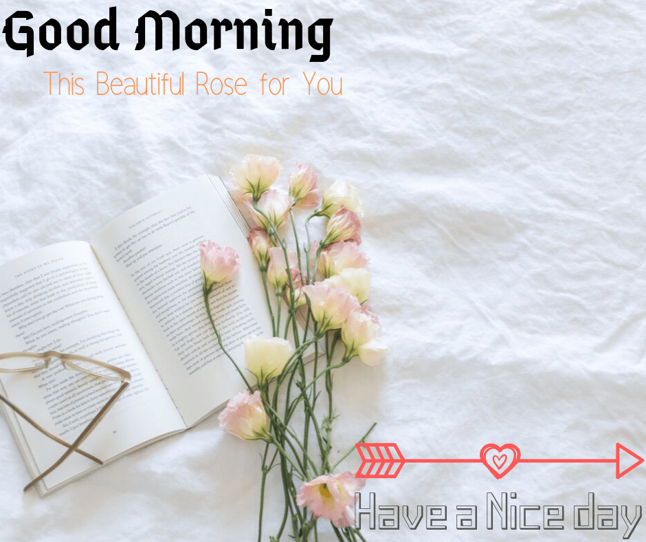 Similar to how an exquisite morning is incomplete with out its orange hue, my morning espresso is incomplete with out texting you. good morning.