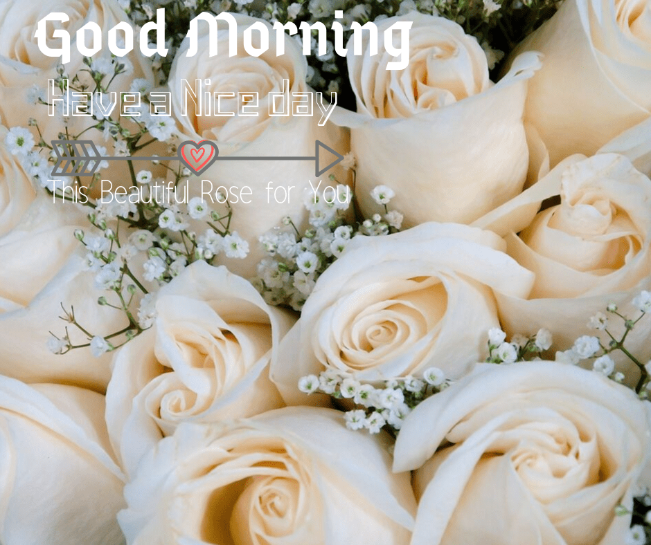 6: My love, you make me look as much as the subsequent day as a result of I do know I'd have you ever by my facet. I can't simply get sufficient of you. I promise to face by you each single day. Good morning and have a pleasant day forward.